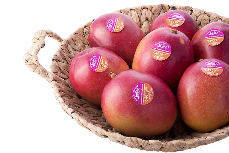 tommy atkins mango